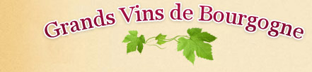 Titre Grands Vins de Bourgogne